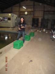 2009_1028_170543-DSCN0234