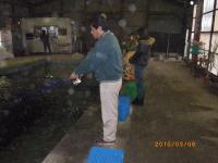 2010_0306_142226-IMGP0362