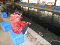 2010_0324_115011-DSCN0355