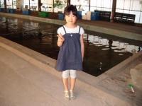 2010_0501_164659-DSCF2357