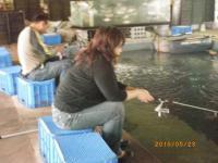2010_0523_120710-IMGP1080