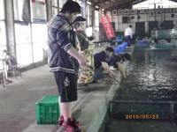 2010_0523_145619-IMGP1084