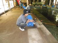 2010_0524_131456-DSCN3802