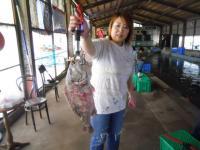 2010_0613_100948-DSCN4471