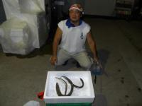 2010_0821_220135-DSCN8342