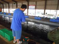 2010_0918_091021-DSCN9465