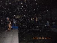 2010_1016_201325-IMGP2415