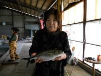 2010_1020_104200-DSCN4618
