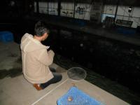 2011_0126_165206-DSCN9304