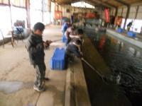 2011_0129_135751-DSCN9428