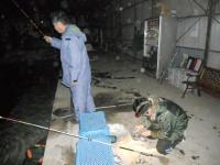 2011_0129_200308-DSCN9498