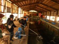 2011_0306_091101-DSCN6032