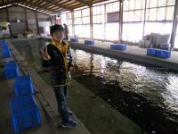 2011_0404_105609-DSCN7036