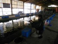 2011_0415_165814-DSCN7461