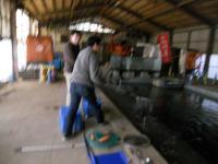 2011_0417_134024-DSCN7612