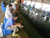 2011_0504_110935-DSCN8324