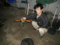 2011_0516_184038-DSCN8939