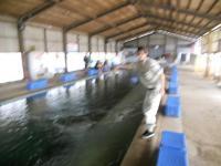2011_0520_135000-DSCN9026