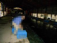 2011_0523_173832-DSCN9185