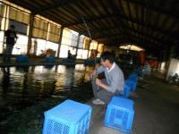 2011_0605_163715-DSCN9729