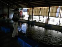 2011_0606_170950-DSCN9763