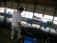 2011_0613_134526-DSCN9583