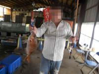 2011_0615_102554-DSCN9985