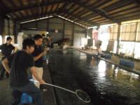 2011_0619_100558-DSCN9780