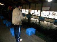 2011_0619_175746-DSCN9781