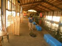 2011_0630_094019-DSCN0045