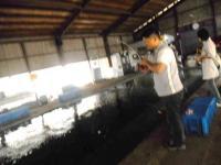2011_0702_095552-DSCN0088