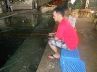 2011_0703_162400-DSCN0018